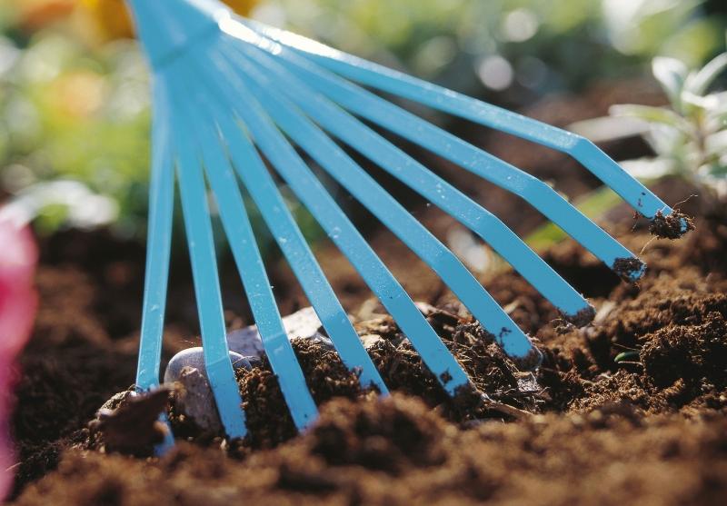 Почва для клубники