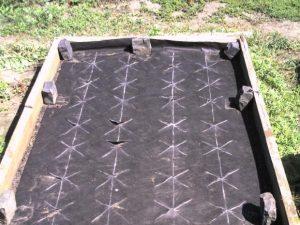 Клубника под укрывным черным материалом