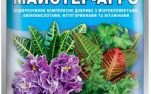 Какое удобрение для комнатных растений лучше